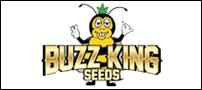 buzzking-c