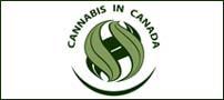 cannabis in canada-c