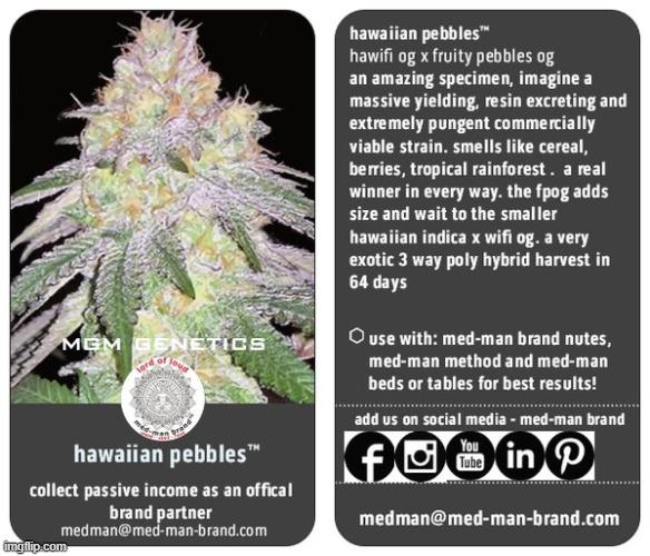 hawaiian pebbles